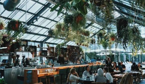 Aloes, czy mięta?  Poznaj nowe, wielofunkcyjne wentylatory powietrza VOLT Polska